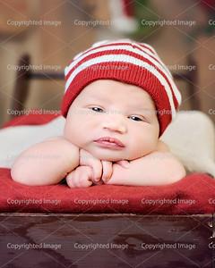 Elam L. { Newborn }