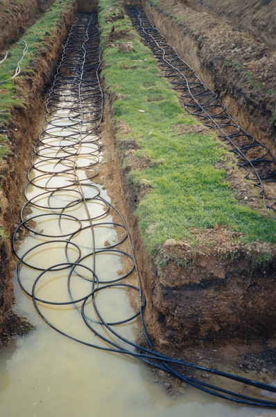 Slinkies in trench.JPG