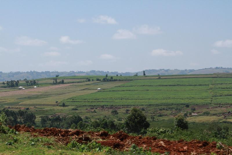 Kenya Part1 '15 2668.JPG