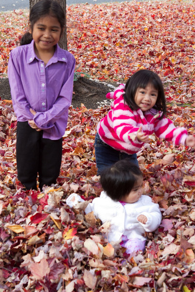 Autumn-Cleaning-2013-2.jpg
