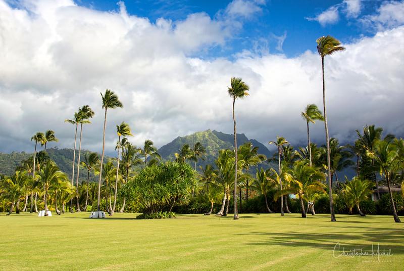 kauai_20120719_6936.jpg
