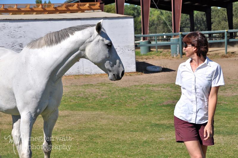 EB&Horses-038.jpg