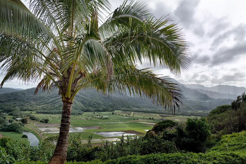 2015-02Feb01-Hawaii-386-Edit-Edit-Edit-Edit.jpg