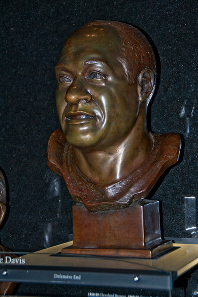 Sports-Football-NFL Hall of Fame 042509-38