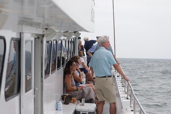 Whale charter july 30