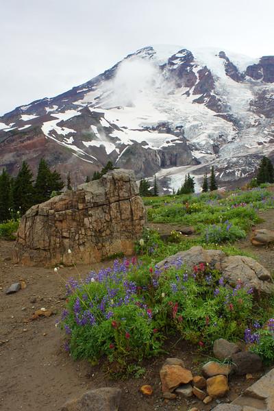 Mt Rainier Summerland