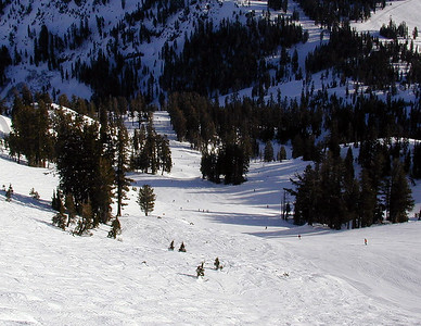 Alpine Meadows 2001