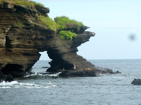 Galapagos 7,8,9