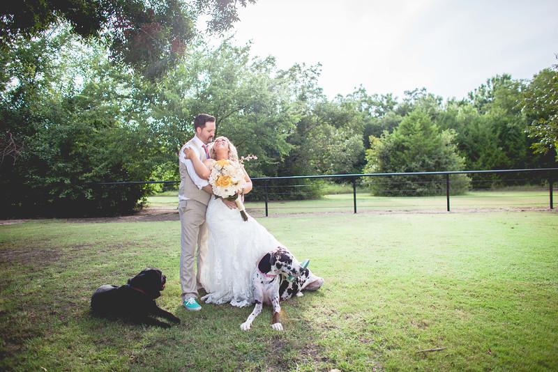 2014 09 14 Waddle Wedding - Bride and Groom-798.jpg