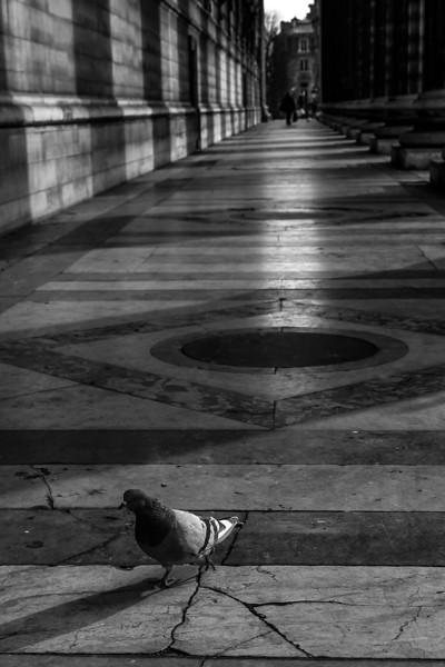 Paris-165.jpg