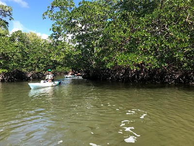 1230PM Heart of Rookery Bay Kayak Tour - Lorentzen & Flerlage