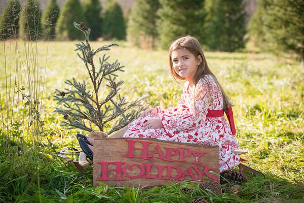 Steph tree farm