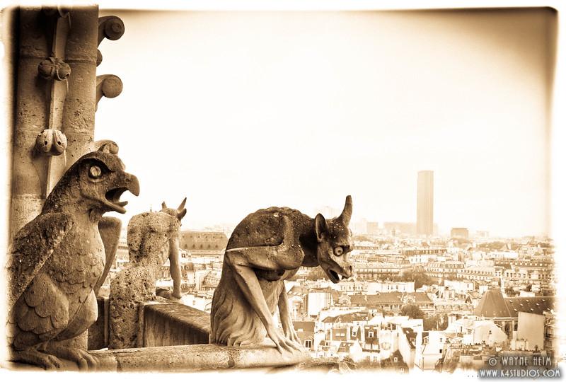Notre Dame Gargoyle 6  Photography by Wayne Heim