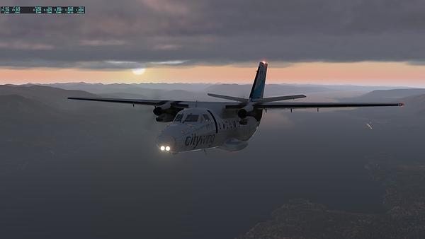 Flight Sims