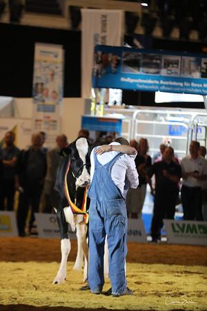Holstein Grand Championship