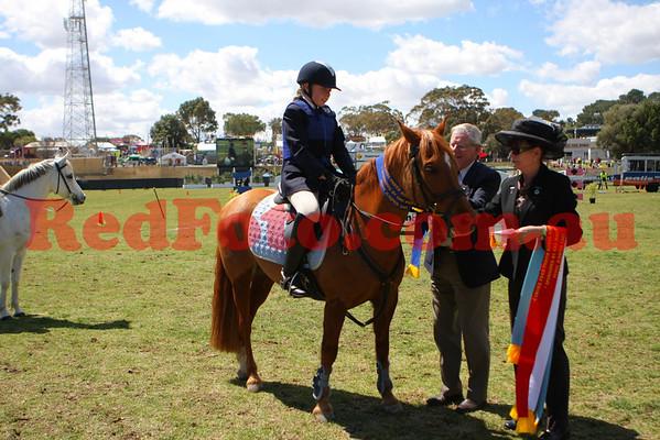 2009 09 30 Perth Royal Show ShowJumping Pony Jumper AM5