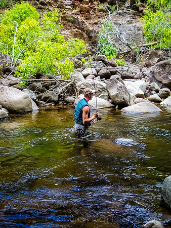 Fly Fishing Waimea Canyon Kauai Hawaii