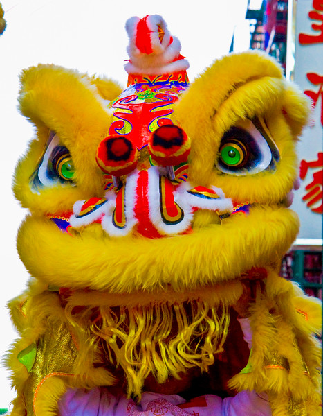 Year of the Tiger - Chinese New Year, February, 20210