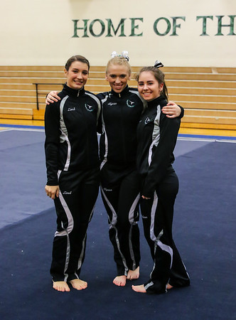 Skyline High School Gymnastics 2015-2016