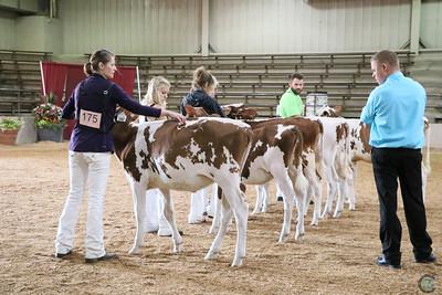 Ohio State Fair R&W Show 2018