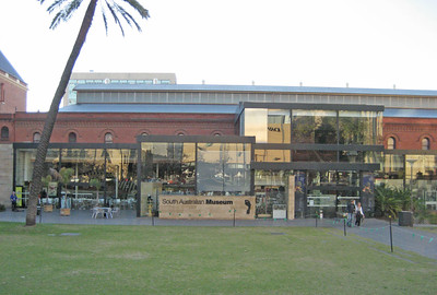 37-South Australian Museum