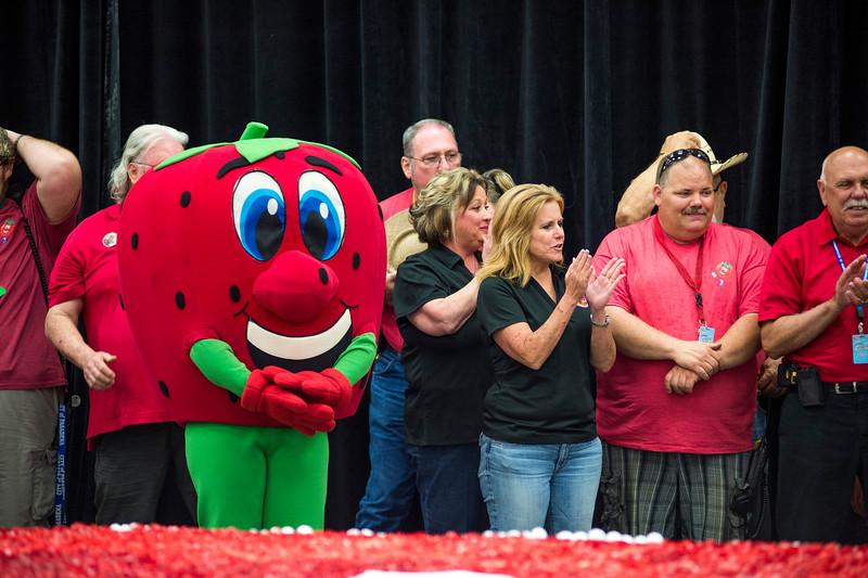 Strawberry Festival_2015_329.jpg