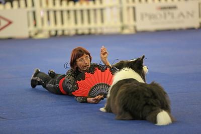 13.10.2013 Dog Dancing Turnier 3. German Open