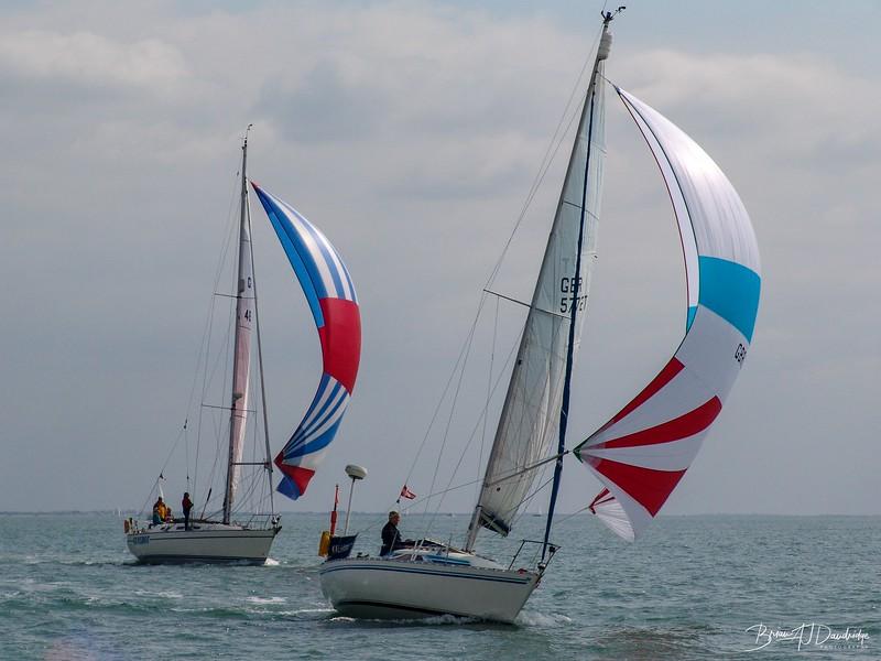 Albatros and Gunshot in race to Seaview