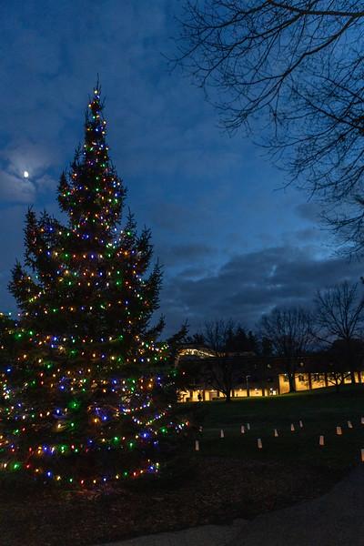 AVS_ChristmasTreeLighting-60.jpg