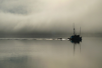 January 2011 - Fog Dissipating Cynthia Meyer, Tenakee Inlet, Alaska