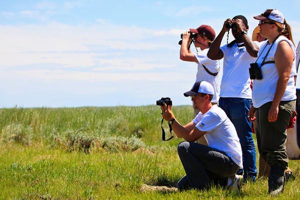 American Prairie Reserve BioBlitz (6.23-26.11)