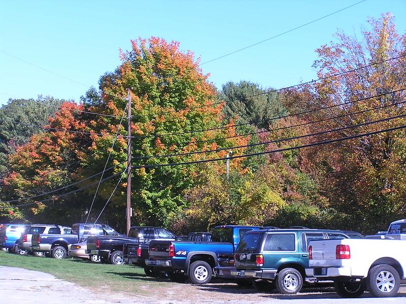 061008 03 Fall colors.jpg