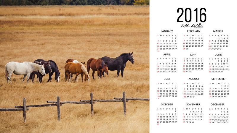 Screen Calender Horses.jpg