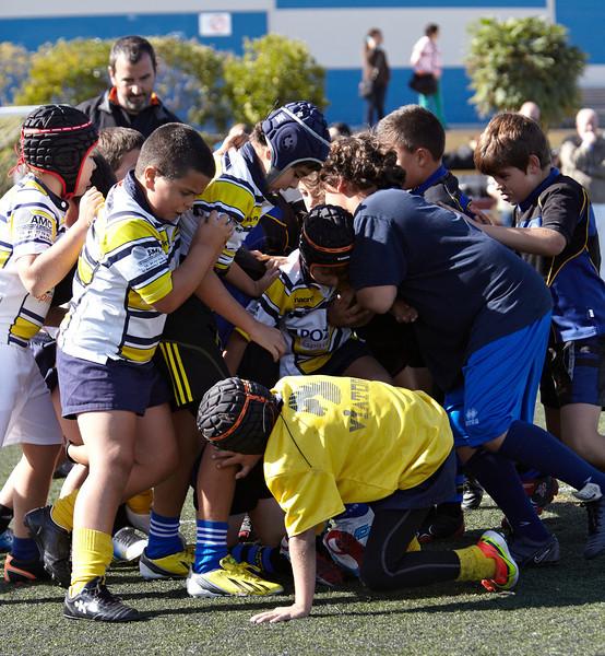 9940_12-Oct-13_TorneoPozuelo.jpg