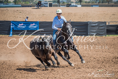Australian Stock Horse Nationals 2018