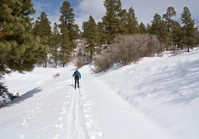 Turkey Creek Ski Tour