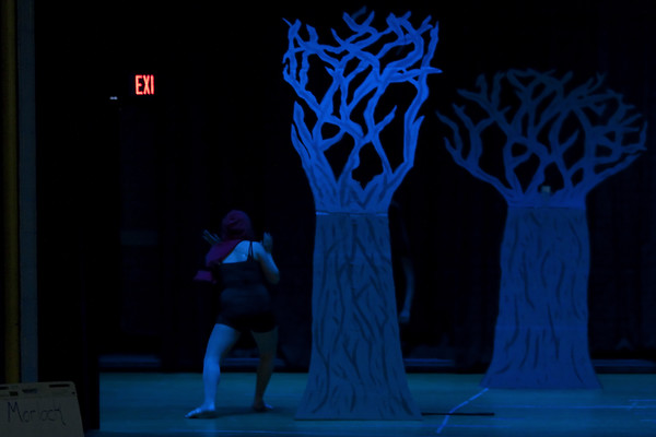 13. Into The Woods