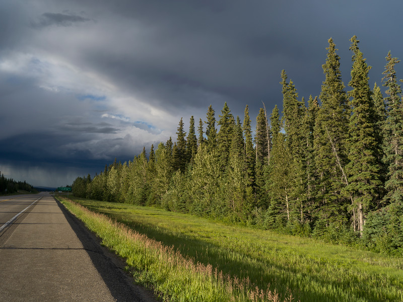 Clouds over forest, Yellowhead Highway, Jasper National Park, Jasper, Alberta, Canada
