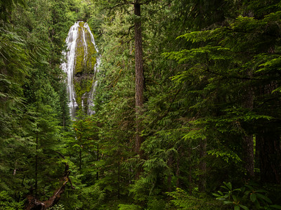 Pacific Northwest Landscapes