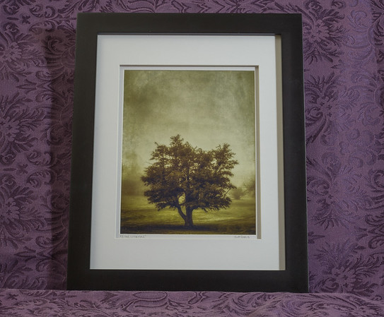 A Tree in the Fog 2 - $60