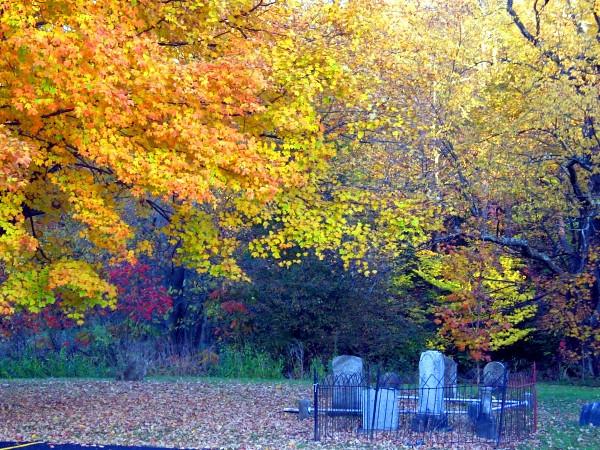 Fall NY 635 (33026465).jpg