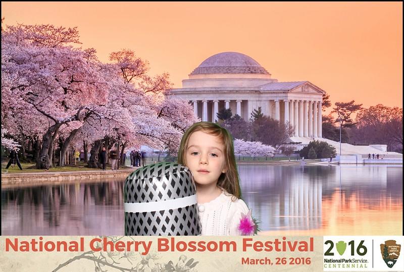 Boothie-NPS-CherryBlossom- (24).jpg