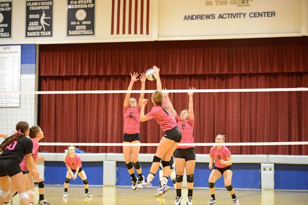 LHNE vs Wayne Volleyball