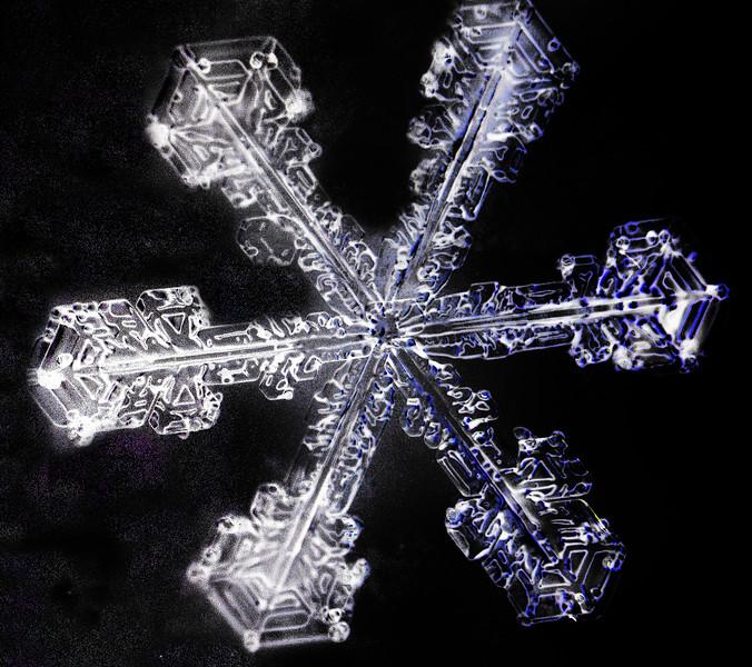 HEX SNOW  ..FLANKS .  .jpg