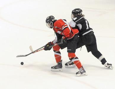 Glenbard Hockey Club quarterfinal