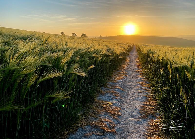 Postmans Path at sunrise