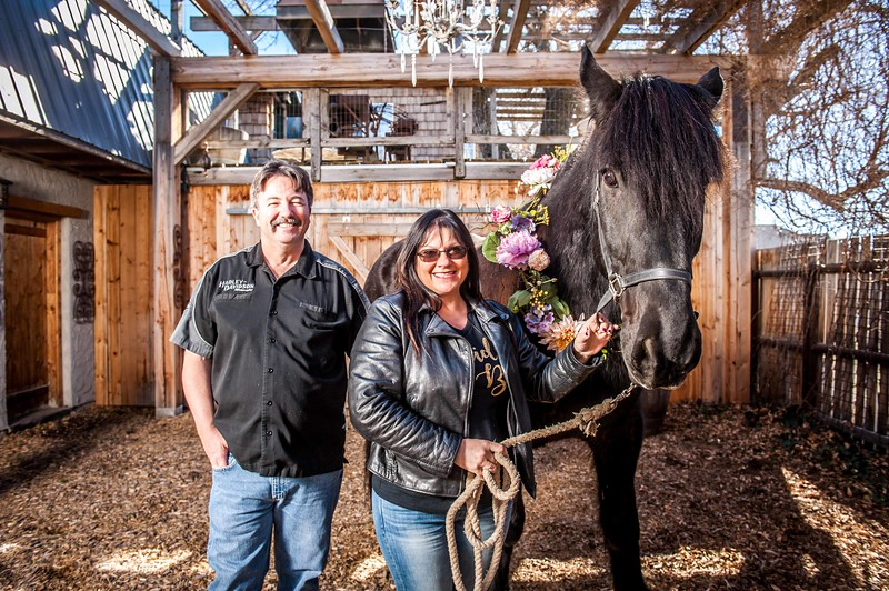 barbwire and lace horse photo shoot Low Resolution-2.jpg