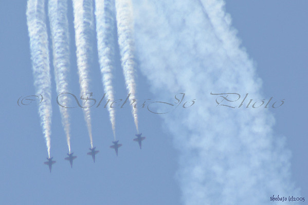 Blue Angels 2005