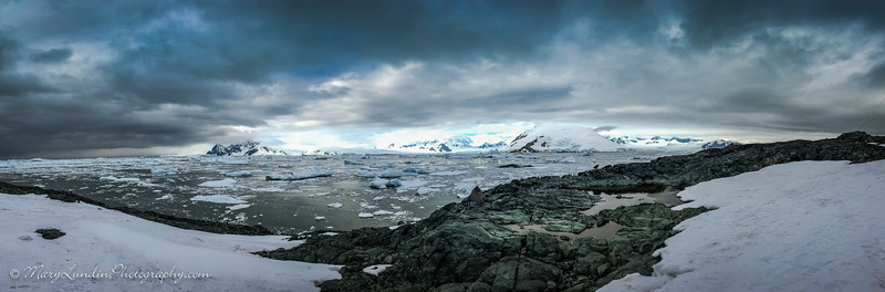 Antarctic-27