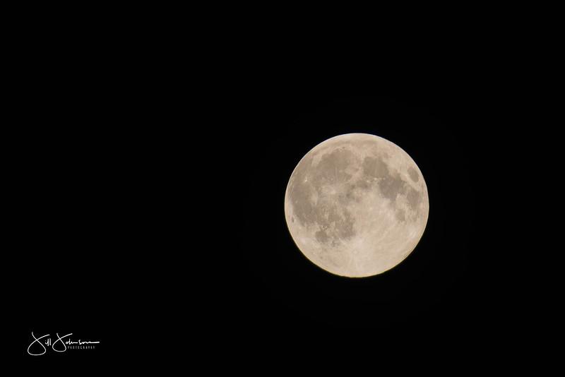 full_moon-0553.jpg